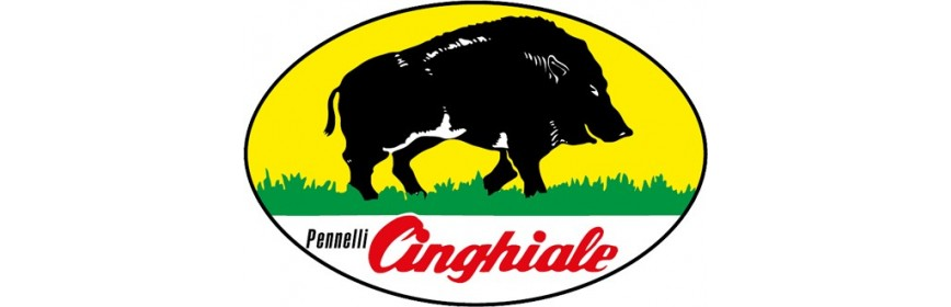 Cinghiale Pennelli